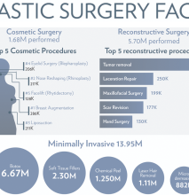 PlasticSurgeryFacts2014