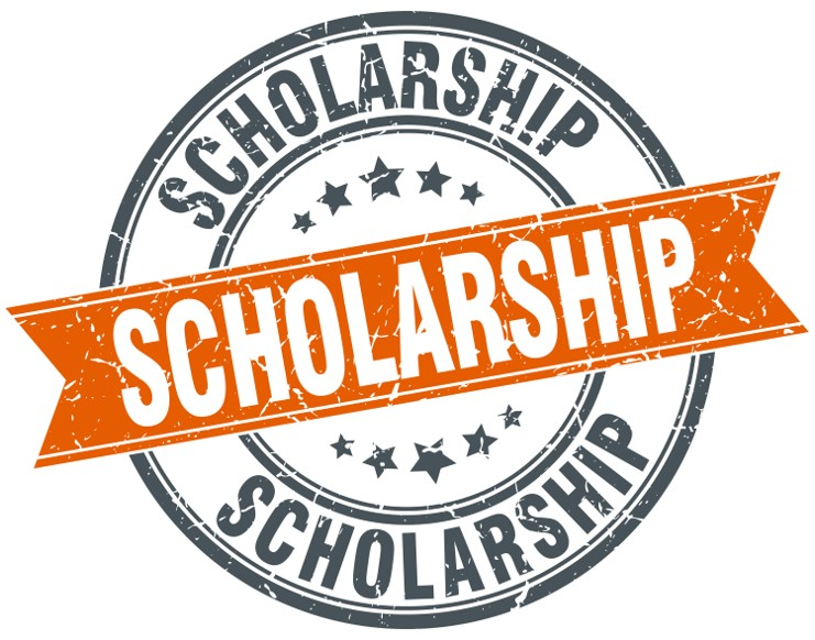 dr-salemy-high-school-scholarship